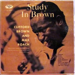 Bernie study in brown