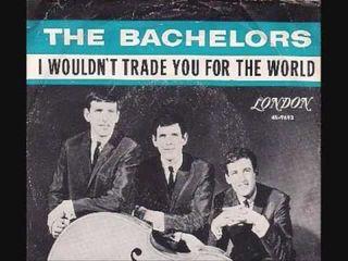 Shel bachelors