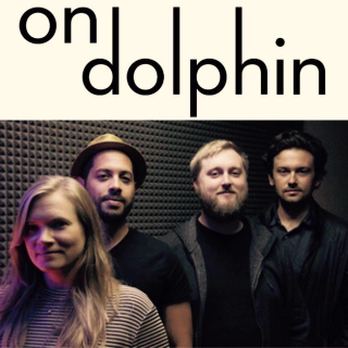 On dolphin band pic