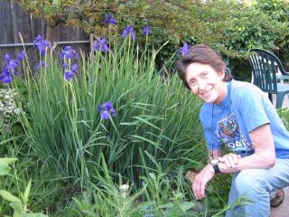 Ellen garden